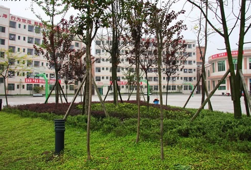 校园环境4